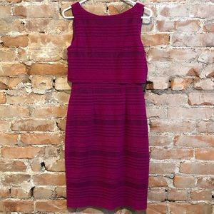 Maggy London Magenta Striped Textured Dress Size 4